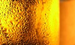 Pivo (foto: Freeimages.com)
